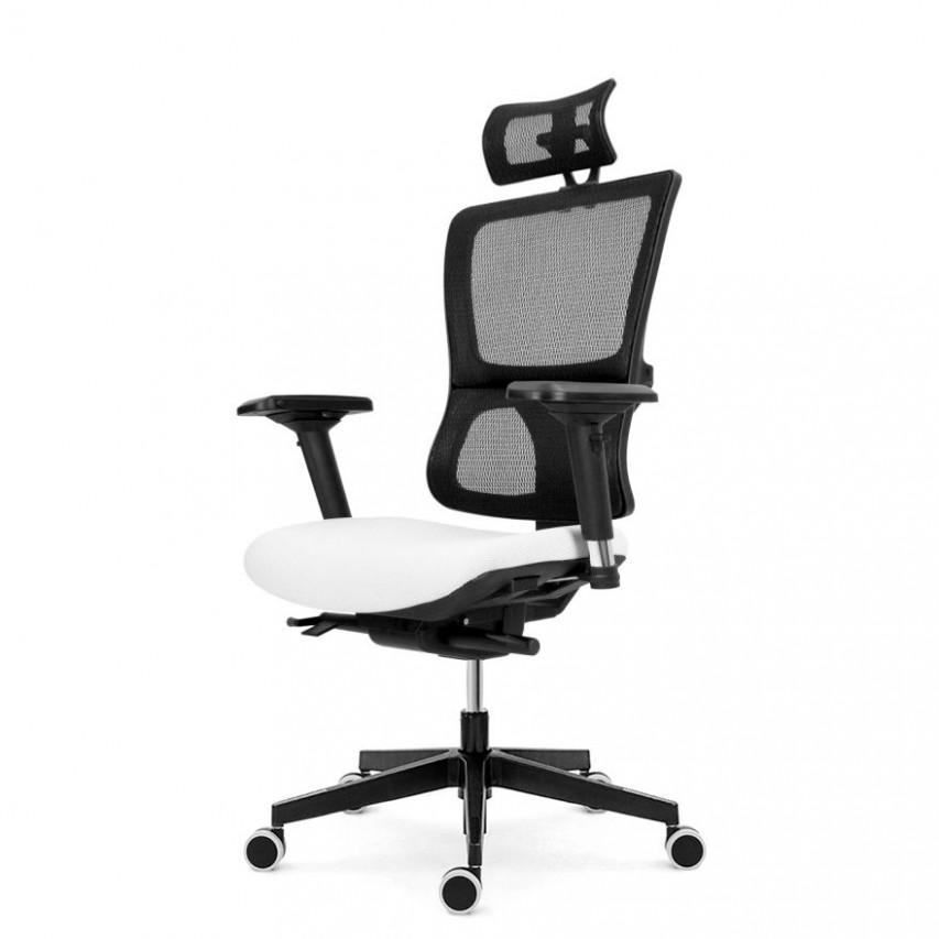 Kancelářská židle EMAGRA X20P s područkami 20B nosnost 20 kg » Židle ...