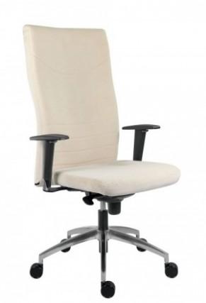 Nejlepší z Kancelářské Židle Nosnost 160 Kg