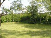 Sbírka Nápad Nejlepší Revitalizace Zahrad