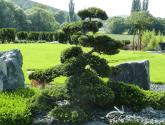 Nápad Nejlépe z Architektura Zahrady