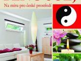 Příklad (485+ Obrázek) Nápady Nejlepší z Feng šuej pro dům interiér