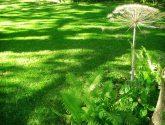 Obrázky Inspirace Nejlepší z Renovace Zahrady